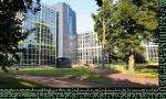 La location de bureau à Lyon avec Team Business Centers