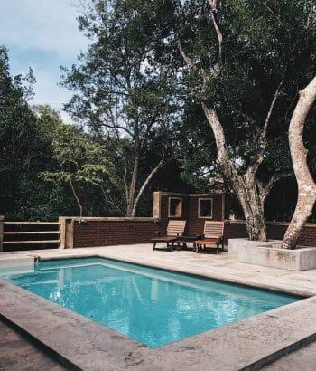 Terrasse en béton avec un piscine et des transats sous les arbres